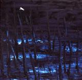 Winter's night, 2005